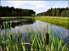 See in der Umgebung von Auma