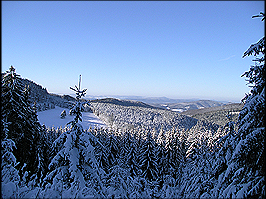 Floh-Seligenthal Winterlandschaft