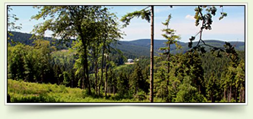 Gipfelwanderweg_Thüringer Wald